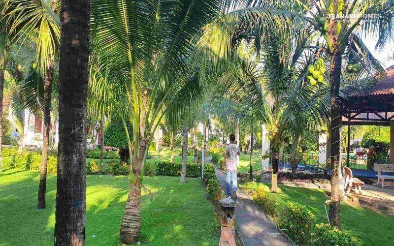 Hình thực tế The Vista Beach Resort