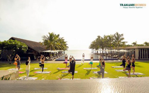 The Vista Resort